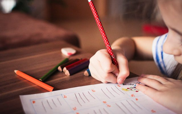 Na czym polega edukacja domowa?